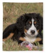 Bernese Mountain Dog Puppy Fleece Blanket