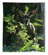 Beverly Hills Deer Fleece Blanket