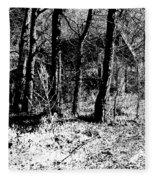 Beyond The Trees Fleece Blanket