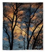 Beyond The Trees Fleece Blanket