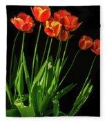 Bicolor Tulips Fleece Blanket