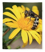 Big Bee On Yellow Daisy Fleece Blanket