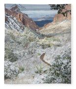 Big Bend Window With Snow Fleece Blanket