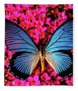 Big Blue Butterfly On Kalanchoe Flowers Fleece Blanket
