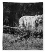 Big Cat In The Woods Fleece Blanket