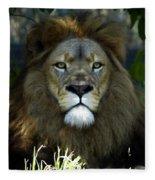 Big Cats 79 Fleece Blanket