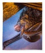 Big Eared Bat At Sunrise Fleece Blanket