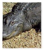 Big Gator Fleece Blanket