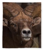 Big Horn Grazing Fleece Blanket