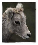 Big Horn Lamb Fleece Blanket