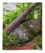 Big Rock Fleece Blanket