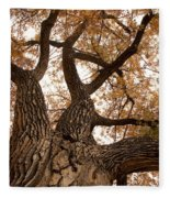 Big Tree Fleece Blanket