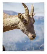 Bighorn In Yellowstone Fleece Blanket