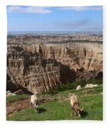 Bighorn Sheeps At Sage Creek Fleece Blanket
