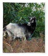 Kerry Mountain Goat Fleece Blanket