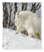 Billy Goat On The Move Fleece Blanket