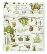 Birch, Hazel, Oak, And Willow Fleece Blanket
