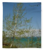 Birch Tree Over Lake Fleece Blanket