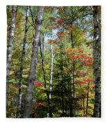 Birches In Fall Forest Fleece Blanket