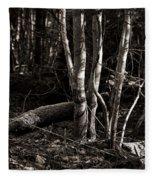 Birches In The Wood Fleece Blanket