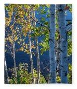 Birches On Lake Shore Fleece Blanket