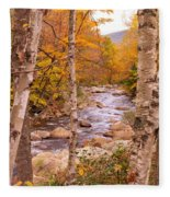 Birches On The Kancamagus Highway Fleece Blanket