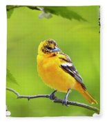 Bird And Blooms - Baltimore Oriole Fleece Blanket