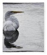 Bird Bath 4619 Fleece Blanket