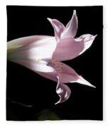 Lovely Lilies Bird In Flight Fleece Blanket