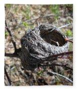 Bird Nest In Wild Rose Bush Fleece Blanket
