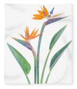 Bird Of Paradize Flowers Fleece Blanket