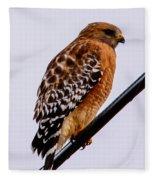 Bird On A Wire With Attitude Fleece Blanket