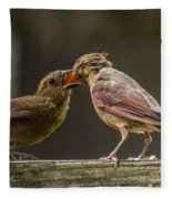 Bird Parenting Fleece Blanket