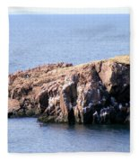 Bird Rock Fleece Blanket