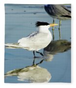 Bird - Tern - Reflection Fleece Blanket