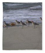 Bird Walk Fleece Blanket