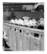 Birdman Of Lower Manhattan Fleece Blanket