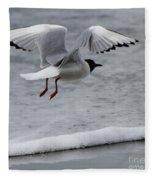 Birds Of A Feather 5 Fleece Blanket