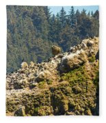 Birds On The Rocks Fleece Blanket
