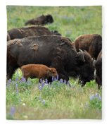Bison And Lupine Fleece Blanket
