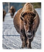 Bison In The Road - Yellowstone Fleece Blanket