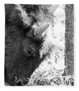 Bison Portrait Monochrome Fleece Blanket