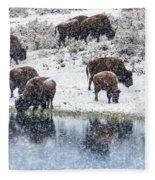 Bison Snow Reflecton Fleece Blanket