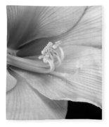 Black And White Amaryllis Bloom Fleece Blanket