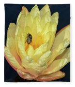Black And White Beetle On Yellow Pond Lily Fleece Blanket