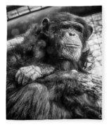 Black And White Chimp Fleece Blanket