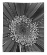 Black And White Gerber Daisy 4 Fleece Blanket