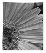 Black And White Gerber Daisy 5 Fleece Blanket