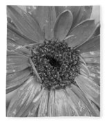 Black And White Gerbera Daisy Fleece Blanket
