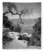 Black And White Grand Canyon 2 Fleece Blanket